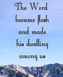 word29