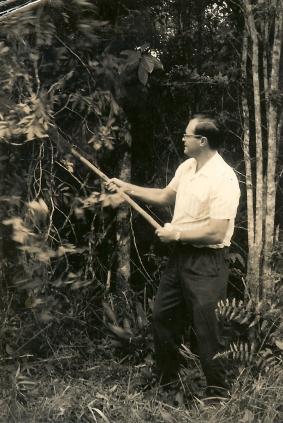 1967.Lynn clearing AMO