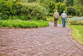 Two men walking on path