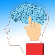 mind5