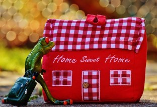 home7